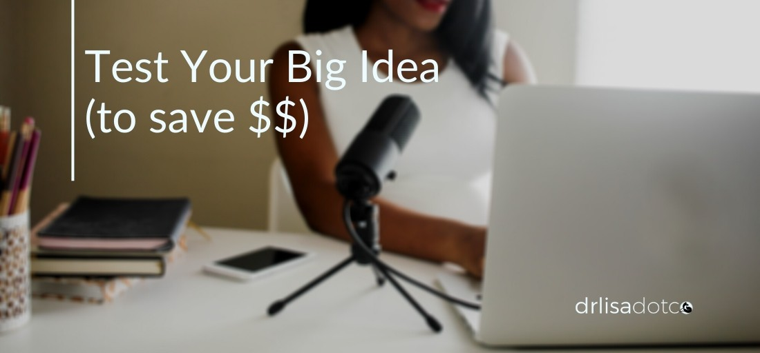 Avoid Expensive Disasters. Test Your Big Idea.